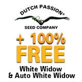 https://www.dutch-passion.com/img/nieuws_org/160x160-ww-promo%202.jpg