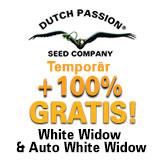 https://www.dutch-passion.com/img/nieuws_org/160x160-ww-promo-DE%202.jpg