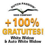 https://www.dutch-passion.com/img/nieuws_org/160x160-ww-promo-FR%202.jpg