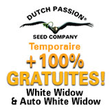 https://www.dutch-passion.com/img/nieuws_org/160x160-ww-promo-FR.jpg