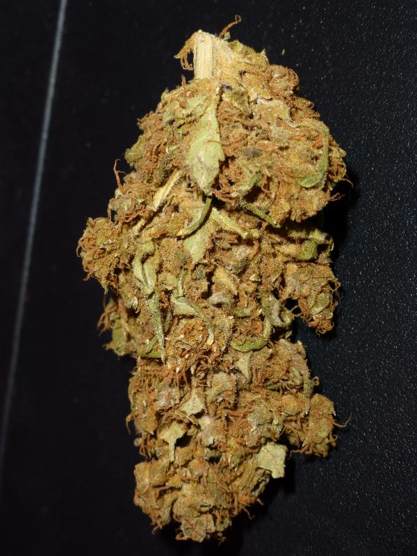 cured cough nugget