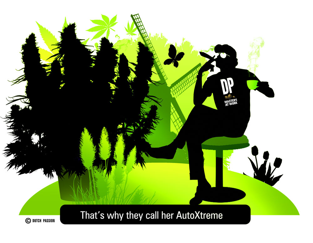 AutoXtreme - grow it at least once