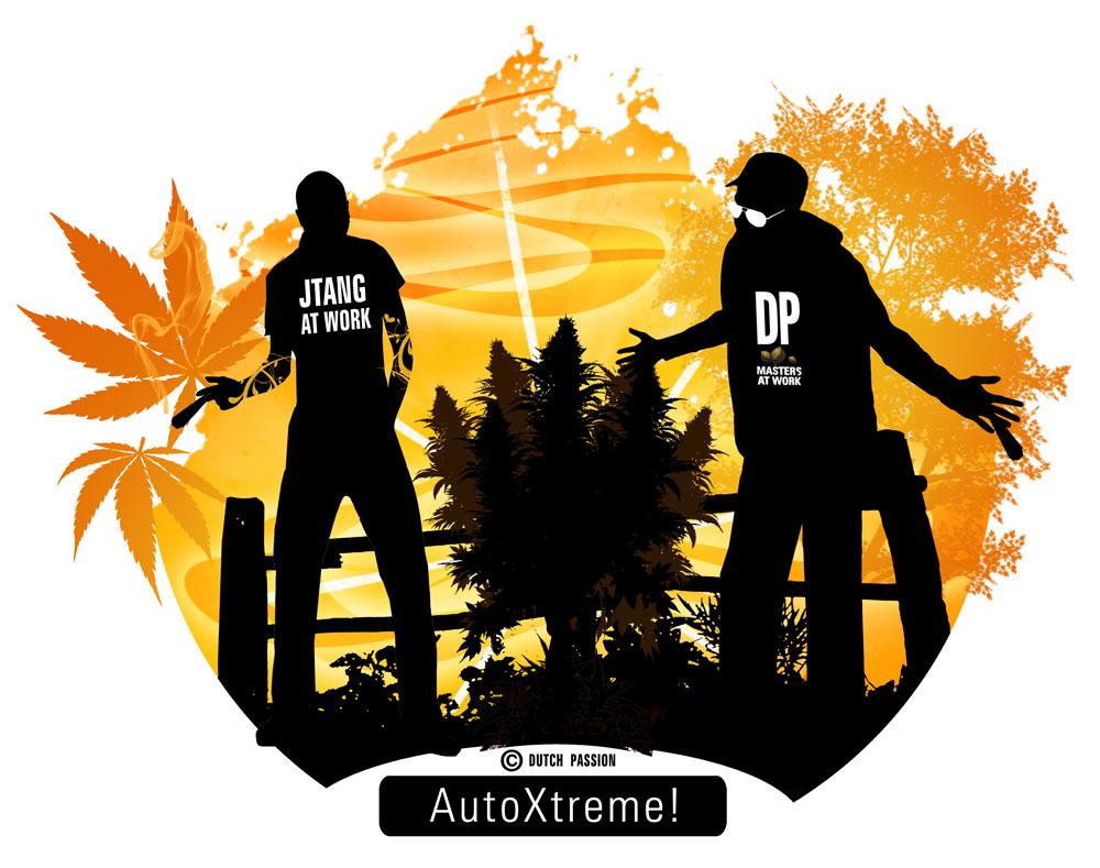 AutoXtreme cartoon with Dutch Joe and JTang