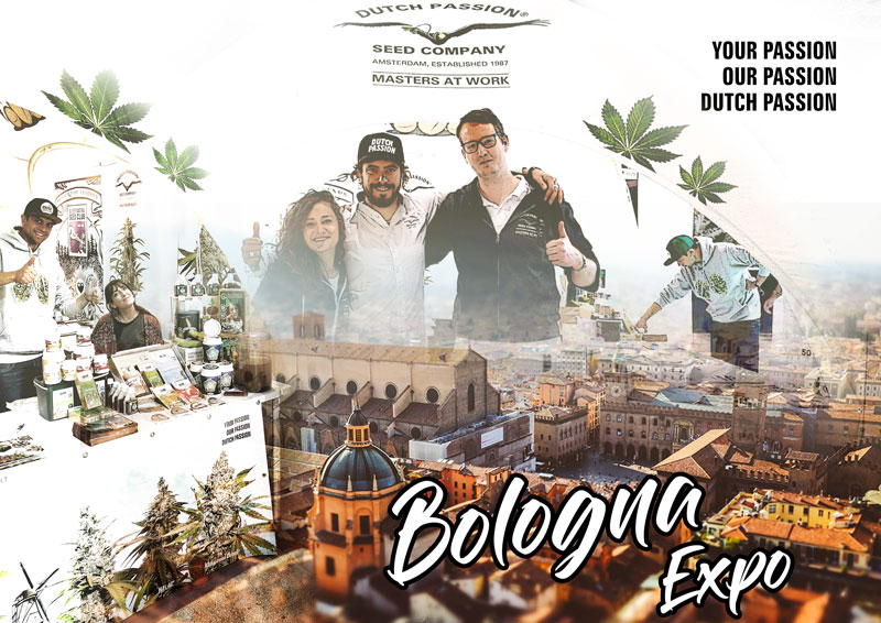 Read our review of 2019 Bologna Indica Sativa trade expo