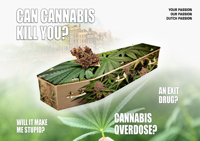 can cannabis kill you