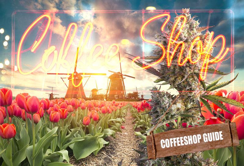 Coffeeshop Holland