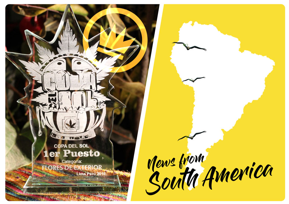 Copa del sol Cup and success in South America