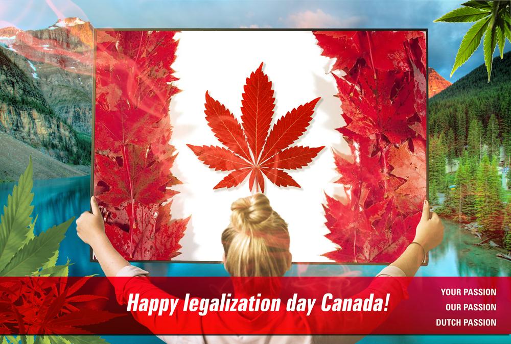 Canada legalization