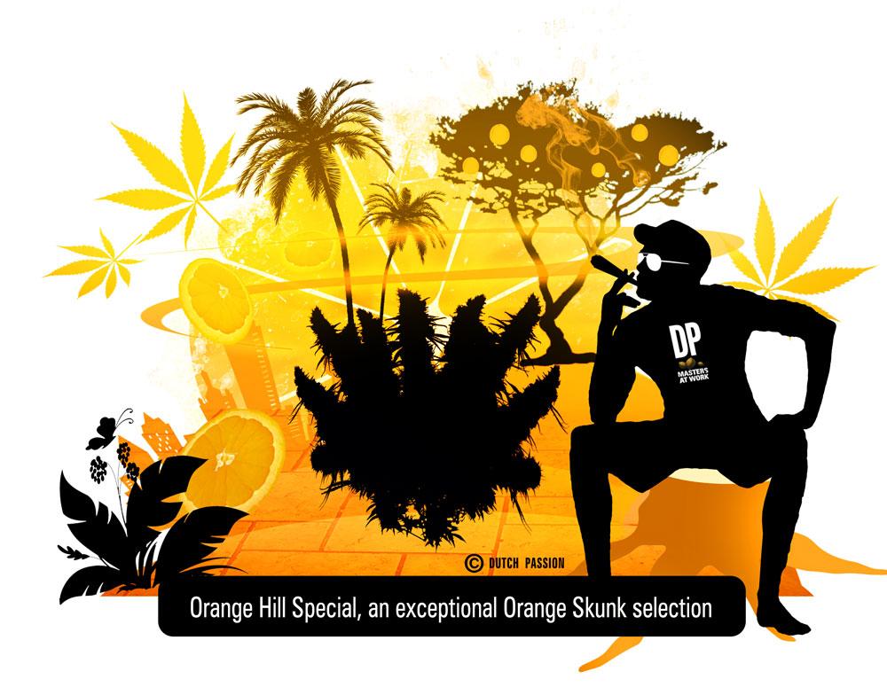 orange hill special concept art baby