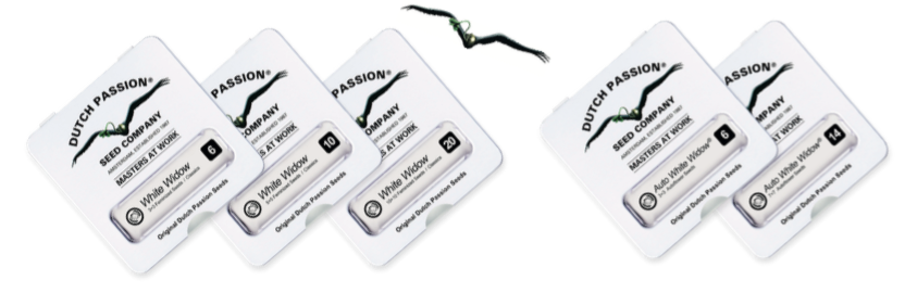 https://www.dutch-passion.com/img/nieuws_org/Promo%20Packs.png
