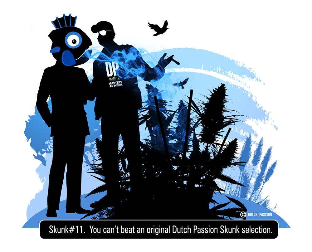 skunk 11 by captain beef heart