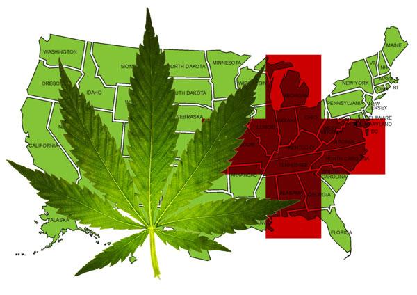 essay on legalisation of cannabis