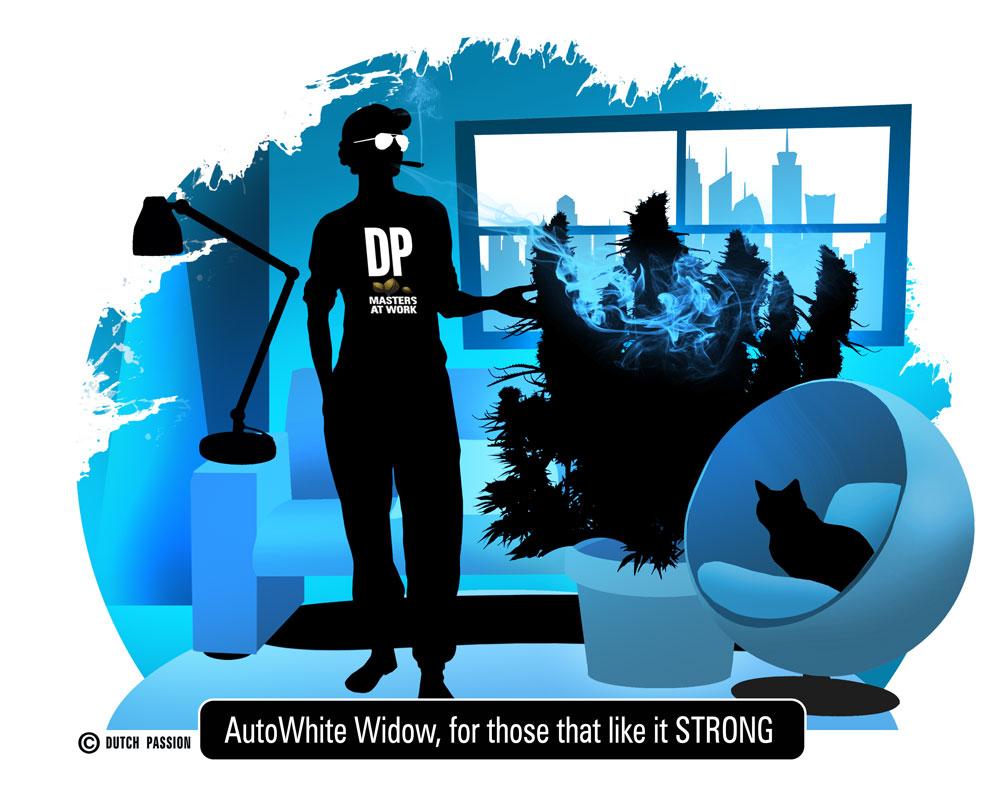 autoww artwork