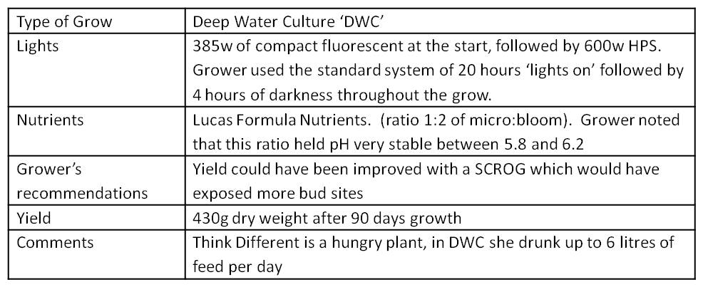 summary table of grow conditions