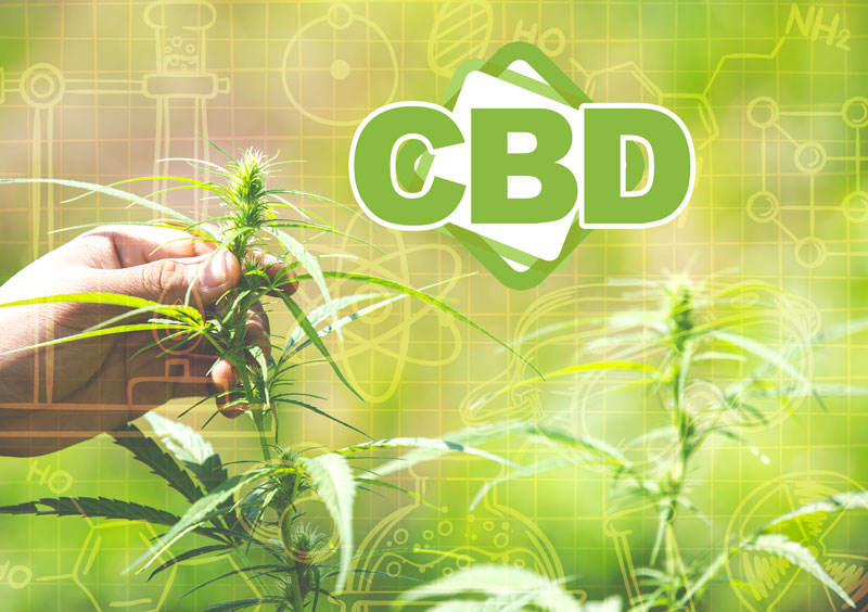 What is the difference between thc, cbd and thcv?