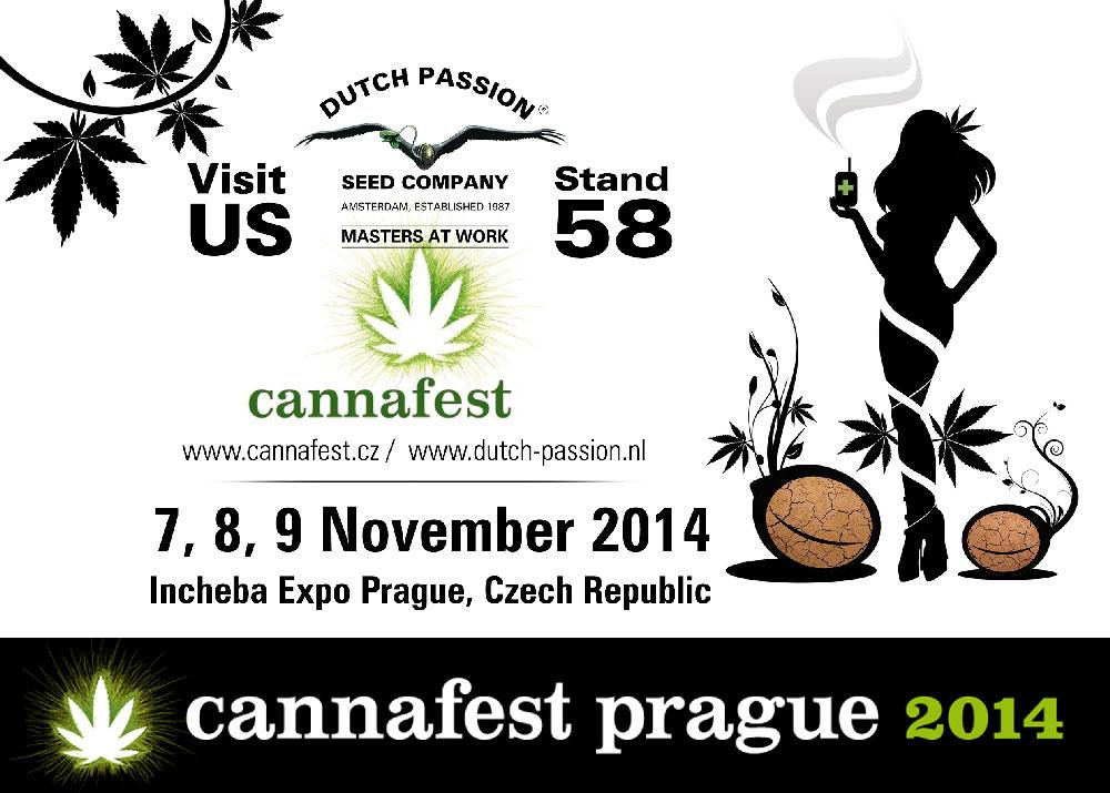 cannafest 2014
