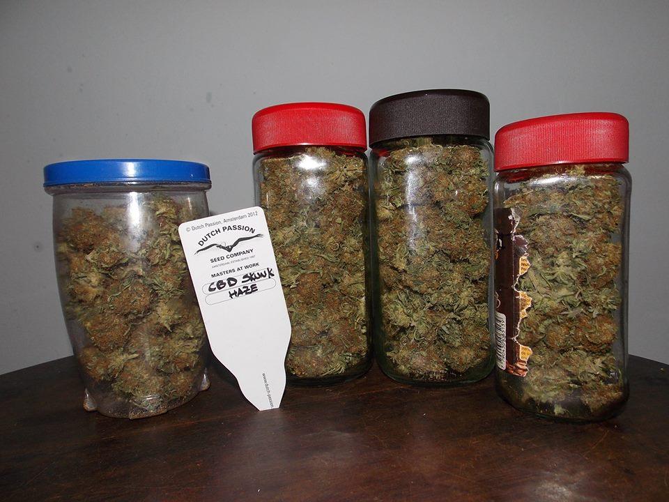 jars of bud