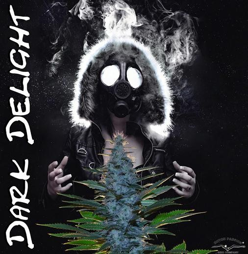 artwork showing a smelly Dark Delight