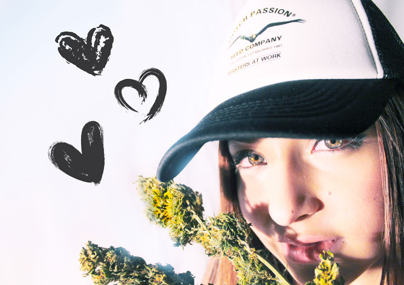 DutchPassion cannabis girl