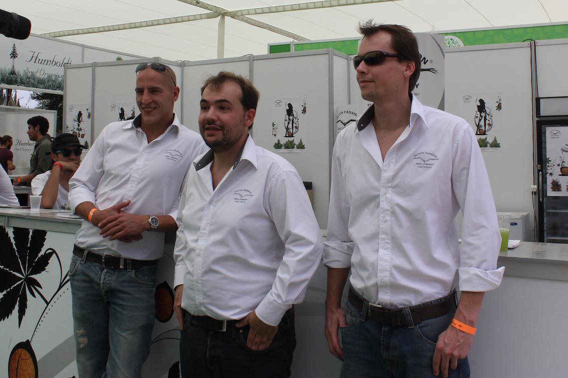 the DP team