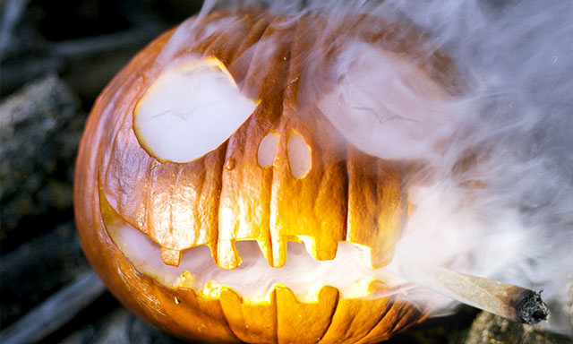 halloween-and-cannabis-pumpkin-smoking-joint-dutch-passion-seed