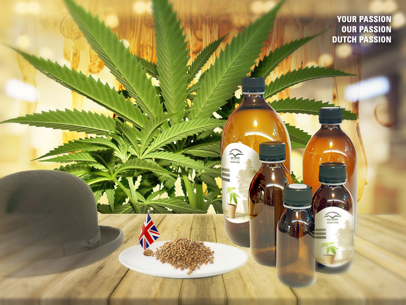 Medicinal cannabis UK