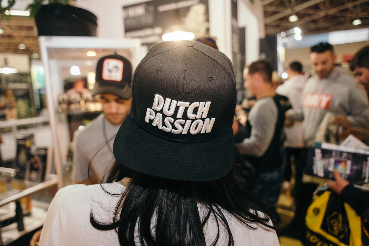 Dutch Passion cap