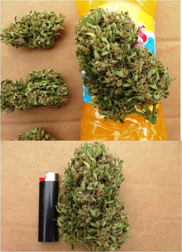 more delicious nuggets of very potent think different