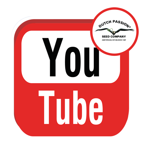 youtube-logo-dutch-passion
