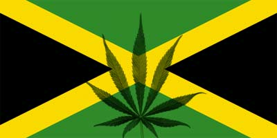 Jamaica: Government is considering the legalization of ...